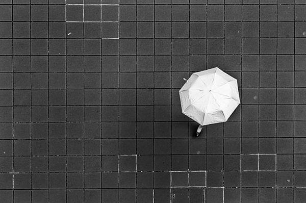 Alison McCauley - On the grid
