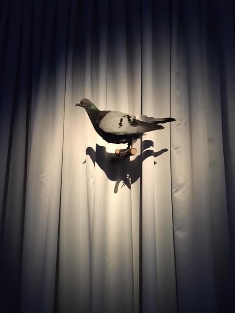 Biennale de Berlin - Amalia Ulman 01