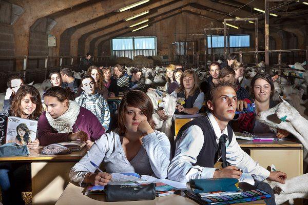 audrey-tabary-la-photographie-de-classe-au-lycee-agricole-jean-marie-bouloux
