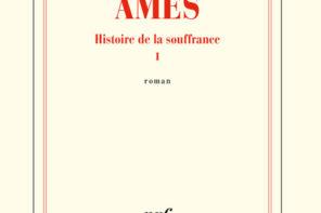 Âmes – Histoire de la souffrance I